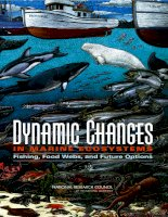 Dynamic Changes IN MARINE ECOSYSTEMS potx