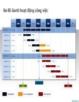 sơ đồ gantt về kế hoạch công việc, gantt chart work plan