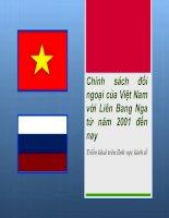 Chính sách đối ngoại của Việt Nam với Liên Bang Nga từ năm 2001 đến nay doc