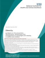 Obesity guidance on the prevention, identification, assessment and management of overweight and obesity in adults and children docx