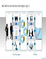 mẫu powerpoint phân tích mô hình kinh doanh hiệu quả
