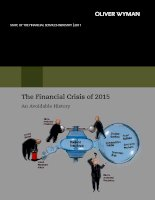 The Financial Crisis of 2015 An Avoidable History pot