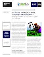 REPRODUCTIVE HEALTH AND ECONOMIC DEVELOPMENT: WHAT CONNECTIONS SHOULD WE FOCUS ON? docx