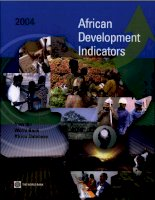 african development indicators ppt