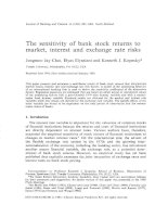 The sensitivity of bank stock returns to market, interest and exchange rate risks docx