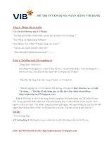 Đề thi tuyển dụng ngân hàng VIB BANK ppt