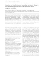 Báo cáo Y học: Production and chemiluminescent free radical reactions of glyoxal in lipid peroxidation of linoleic acid by the ligninolytic enzyme, manganese peroxidase pot