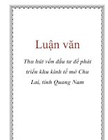 Luận văn: Thu hút vốn đầu tư để phát triển khu kinh tế mở Chu Lai, tỉnh Quang Nam pdf