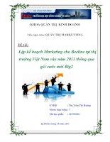 Tiểu luận: Lập kế hoạch Marketing cho Beeline tại thị trường Việt Nam vào năm 2011 thông qua gói cước mới Big2 docx