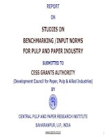 REPORT ON STUDIES ON BENCHMARKING /INPUT NORMS FOR PULP AND PAPER INDUSTRY SUBMITTED TO CESS GRANTS AUTHORITY pot