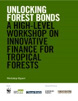 UNLOCKING FOREST BONDS A HIGH-LEVEL WORKSHOP ON INNOVATIVE FINANCE FOR TROPICAL FORESTS docx