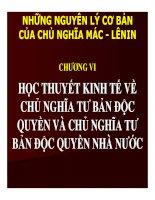 CHƯƠNG VI HỌC THUYẾT KINH TẾ VỀ CHỦ NGHĨA TƯ BẢN ĐỘC QUYỀN VÀ CHỦ NGHĨA TƯ BẢN ĐỘC QUYỀN NHÀ NƯỚ pptx