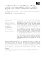 Báo cáo khoa học: Identification of a novel thyroid hormone-sulfating cytosolic sulfotransferase, SULT1 ST5, from zebrafish Molecular cloning, expression, characterization and ontogenic study ppt