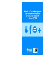 A Guide to Clinical Management and Public Health Response for Hand, Foot and Mouth Disease (HFMD) doc