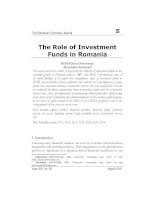 The Role of Investment Funds in Romania pptx