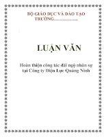 LUẬN VĂN: Hoàn thiện công tác đãi ngộ nhân sự tại Công ty Điện Lực Quảng Ninh pot