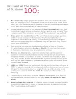 Brilliant At The Basics of Business 100:1 pdf