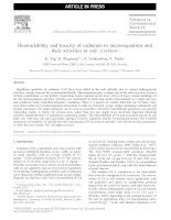 Bioavailability and toxicity of cd to microorganisms and their activities in soil