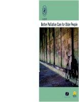 BETTER PALLIATIVE CARE FOR OLDER PEOPLE pot