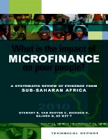 What is the impact of microfinance on poor people? a sysTemaTic review of evidence from sub-saharan africa pptx