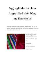 Ngộ nghĩnh chú chim Angry Bird nhồi bông mẹ làm cho bé pdf