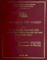 Một số giải pháp nhằm phát triển quan hệ kinh tế thương mại giữa Việt Nam với các nước Nam Á