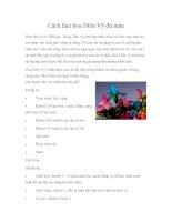 Cách làm hoa Diên Vỹ đủ màu pptx