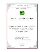ĐÁNH GIÁ ĐA DẠNG DI TRUYỀN CỦA GIỐNG LAN RỪNG Dendrobium THU THẬP TẠI THÀNH PHỐ HỒ CHÍ MINH VÀ RỪNG NAM CÁT TIÊN BẰNG KỸ THUẬT RAPD pdf