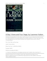 A Boy I Knew and Four Dogs ppt
