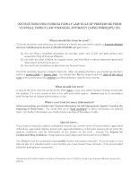 INSTRUCTIONS FOR FLORIDA FAMILY LAW RULES OF PROCEDURE FORM 12 902 ...