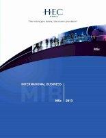 International business Msc 2013 ppt