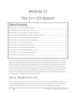 Module 11 The C++ I/O System doc