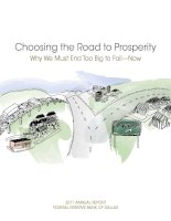 Choosing the Road to Prosperity Why We Must End Too Big to Fail—Now pdf