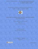 Luận văn:Trang phục dạ hội được phát triển dựa trên hình ảnh, hoa văn gốm Bát Tràng pdf