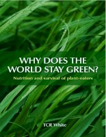 WHY DOES THE WORLD STAY GREEN? Nutrition and survival of plant-eaters doc