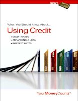 What You Should Know About...Using Credit pot