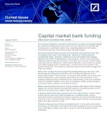 Capital market bank funding (Not such a) brave new world … docx