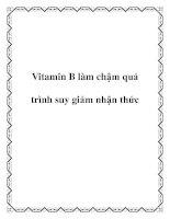 Vitamin B làm chậm quá trình suy giảm nhận thức docx