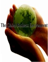 the global business environment doc