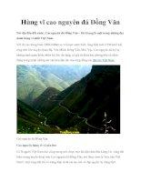 Hùng vĩ cao nguyên đá Đồng Văn pdf