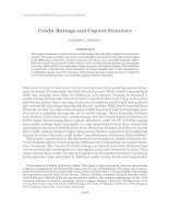 Credit Ratings and Capital Structure doc