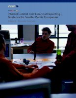 Internal Control over Financial Reporting – Guidance for Smaller Public Companies Volume I : Executive Summary ppt