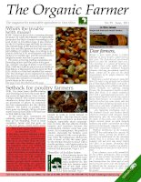 The magazine for sustainable agriculture in East Africa pdf