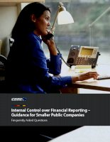 Internal Control over Financial Reporting – Guidance for Smaller Public Companies pot