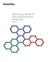 TECHNOLOGY, MEDIA & TELECOMMUNICATIONS PREDICTIONS 2013 ppt
