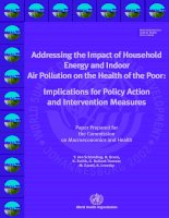 Addressing the Impact of Household Energy and Indoor Air Pollution on the Health of the Poor: Implications for Policy Action and Intervention Measures pot