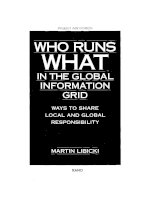 Who runs what in the global information grid ppt