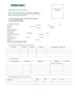mẫu đơn thông tin ứng viên ngân hàng ab bank