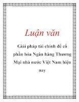Luận văn: Giải pháp tài chính để cổ phần hóa Ngân hàng Thương Mại nhà nước Việt Nam hiện nay pot