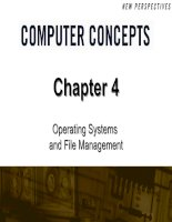 Chapter 4: Operating Systems and File Management pdf